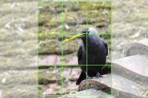 Bildzuschnitt Beispiel 7a