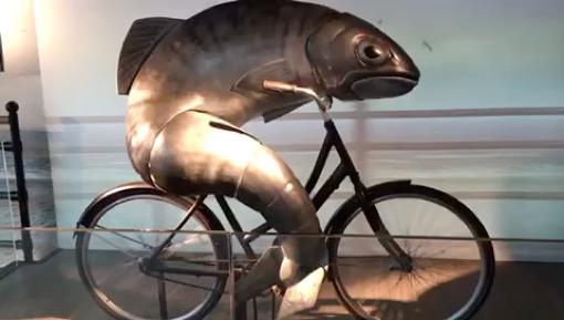 Was tun, wenn der Fisch kein Fahrrad will?