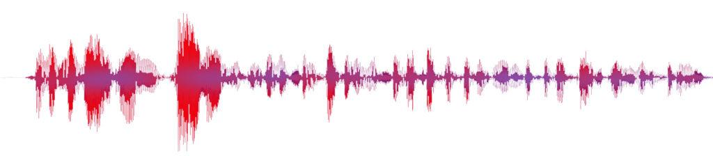 Waveform Sprachaufnahme