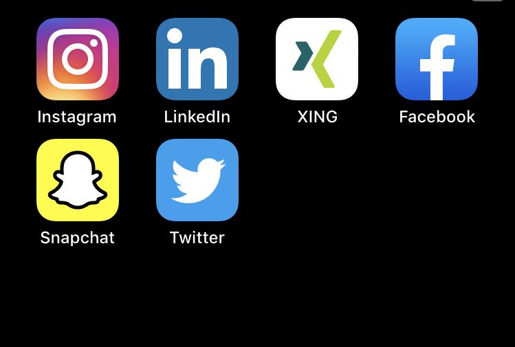 Professionell im Netz: geschäftlich und privat